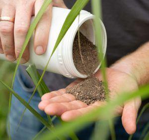 Comment est testé l'engrais de gazon exactement ?