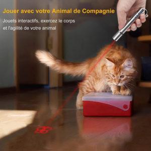 FYNIGO nous livre un pointeur laser de faible puissance pour jouer avec votre animal de compagnie