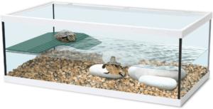 Ces nouveaux aquaterrariums sont idéaux pour une première approche du monde des tortues et des amphibiens.