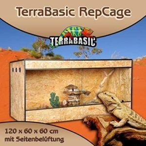 Saviez-vous que les reptiles n'ont pas vraiment le sang froid ? Ce sont des animaux ectothermes, dépendant exclusivement de la chaleur du soleil. Faites le test !