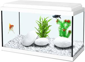 Les avis des utilisateurs sont unanimes sur le produit. C'est un produit raffiné et élégant qui peut aussi bien faire aquarium que terrarium. Vous pouvez donc aussi bien mettre des poissons que des tortues. A vos marques, prêt, testez! Selon notre avis, il est doté d'une petite trappe au dessus, pratique pour pouvoir nourrir vos animaux de compagnie.