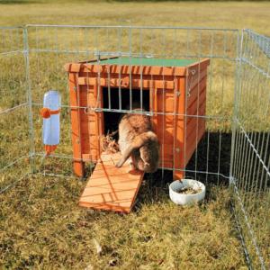 Grâce à cette cage à lapin, vos lapins pourront sortir dehors en toute sécurité grâce à une ouverture pratique d'après l'avis des clients.
