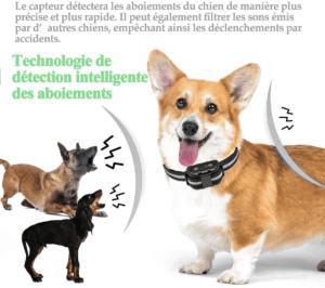 Certains colliers anti-aboiement détectent automatiquement lorsque votre chien aboie.