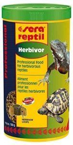 Les protéines sont importantes pour les tortues d'eau.