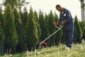 Un homme coupant l'herbe dans un jardin.