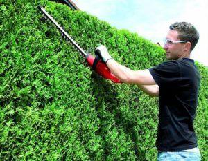 Un homme utilise un taille haie électrique robuste et maniable pour couper de l'herbe.