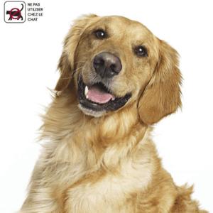 D'après les tests, il est important de vous assurer que le produit est destiné uniquement aux chiens et non aux chats.