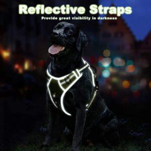 Harnais confortable illuminé pour chien.
