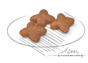 Aliment pour chien sans graines et sans arômes artificiels.