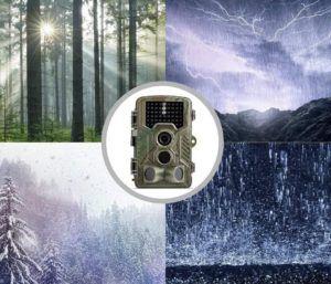 Caméra utilisable de jour comme de nuit pour la chasse.