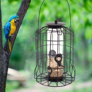 Cette mangeoire pour oiseaux ajoutera une petite touche à votre extérieur