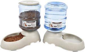 Une excellente gamelle pour chat pour un combo alimentation et hydratation