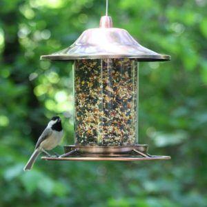 Une mangeoire pour oiseaux particulièrement réussie d'après les avis et tests
