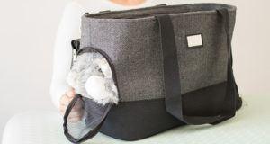 Quels sont les avantages et domaine d'application du sac de transport chien ?
