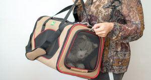 Qu'est-ce qu'un sac de transport pour chien ?